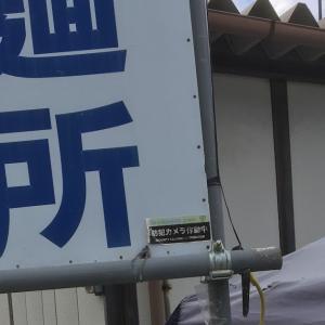 【初購入】須坂市のメダカ無人販売所『陽めだか』さんへ行ってきました(^ν^)