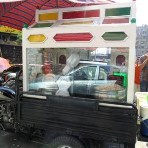 エジプト・カイロ滞在記2011年5月~タハリール広場の平和なデモ編~