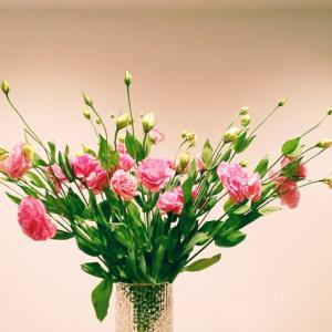 お花も人も毎日の愛情の積み重ねが大切