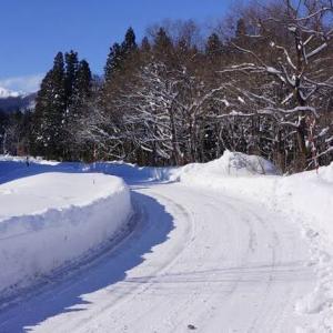 積雪は予報を下回りました