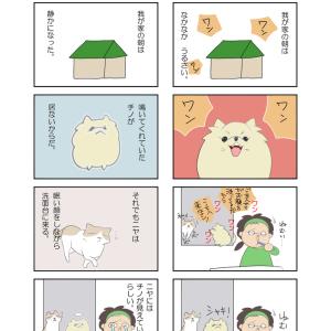 【四コマ漫画】愛犬の居る朝