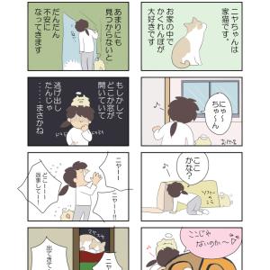 【四コマ漫画】ニャンコに遊んでもらうには・・・?