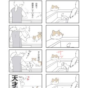四コマ漫画描いて居てニヤにヤキモチ焼いてもらえました♡