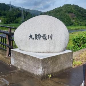 8/8 九頭竜川釣行3日目③