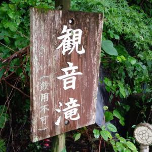 8/22 寒狭川(豊川)上流釣行⑦