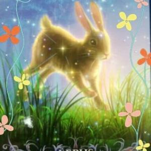 星座オラクルカード ~11月17日のメッセージ~