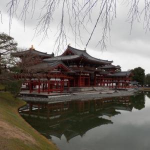 【関西私鉄5】京都みやこびとチケットで行く、宇治平等院