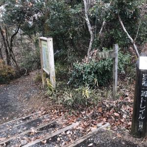 【関西私鉄7】京都トレイルで山下り、京下り(乗り鉄)
