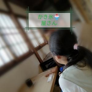 奈良を楽しむ奈良市民。