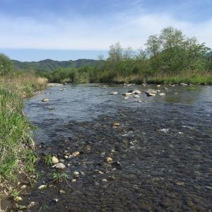 GW後半の渡良瀬川