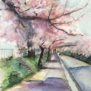 今年も桜はきれいに咲いてました🌸