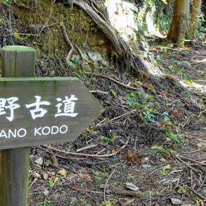 世界遺産 熊野古道 古道歩きの体験ツアー