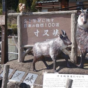 大井川の旅(2)寸又峡・夢の釣り橋へ