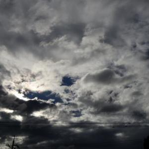 午前中頭痛薬飲んでしまいました。 頭痛日記 2019年10月21日(月) 曇り