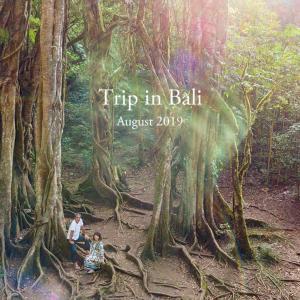 先日のバリ島北西部ツアーで撮影した写真がフォトアルバムになりました。一挙に全ページをご紹介!