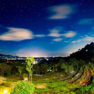 夜のライステラスとバリ島の夜景