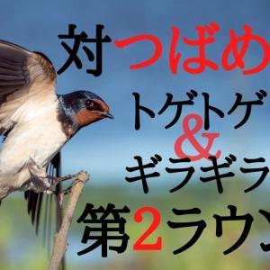 ツバメの巣対策に本気出した男の話(その2)。トゲトゲやギラギラは効果があるのか!?