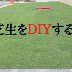 芝生(TM9)をDIYする。素人でもできるのか?張り方や作業手順を詳しく解説!