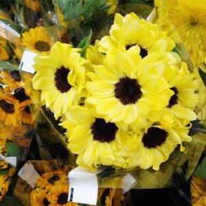 ヒマワリな顔 初夏の花市場。。。