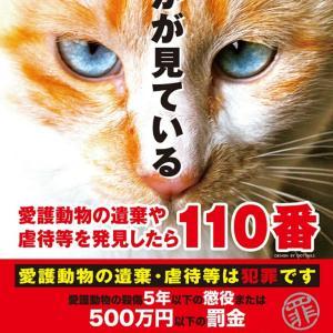 動物遺棄は犯罪です!!