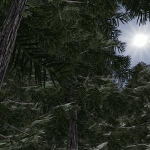 Blender 無料のアドオンとテクスチャを駆使してローポリの木を作る方法
