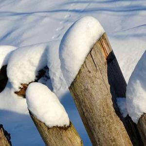 Blender 簡単に雪を積もらせることができるアドオン紹介【Real Snow】