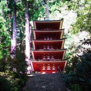 女人高野『室生寺』へ。仏様たちは東京に出張中(^_^;)