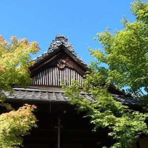 毎日開催!京都のお寺の座禅体験(15分×2)に参加しました(^_^)
