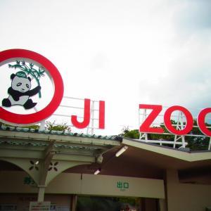 パンダとコアラが両方いる!王子動物園に行ってきました(^_^)