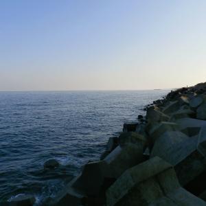 リベンジ!!石川 加賀のアオリイカ釣り