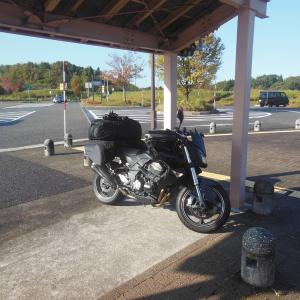 新潟県でキャンプ