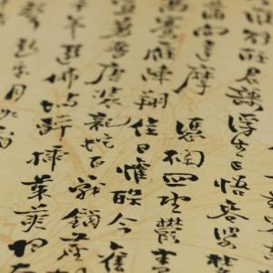 【すしの歴史】2. すしが日本に定着したのはいつ?