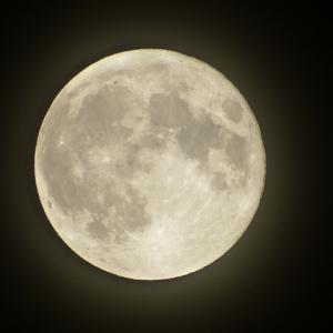 満月の夜に。