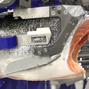 ほぼ全自動のサーモンの切り身の製造工程が凄い!!