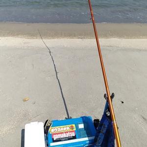 夏はやっぱ浜でキス釣りでしょう