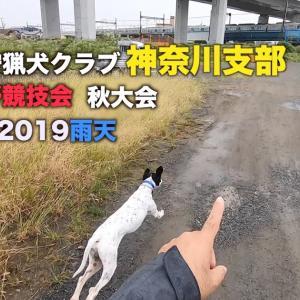 セブン全英狩猟犬クラブ神奈川支部参戦