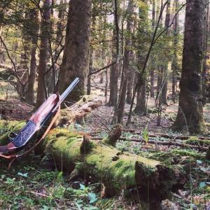 ヤマドリの森を散歩してきました。