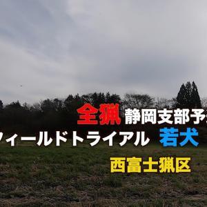 全猟FT若犬チャンピオン東海ブロック静岡予選