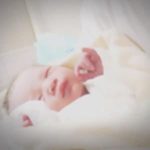 セサミベビー誕生