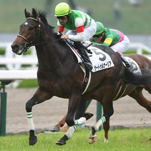 日本ダービー2019は、仕方ありませんが、サートゥルナーリアが勝ちます。