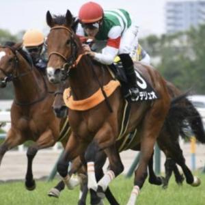 〈9月1日競馬予想〉9月初っ端の勝負レースは、新潟記念2019。狙うは、センテリュオの一発です。