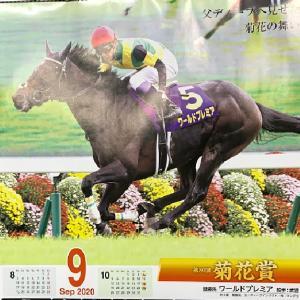 9月最初の競馬は金子真人HD祭りだった。