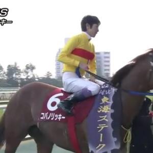 第38回 東海テレビ杯東海S  GⅡ