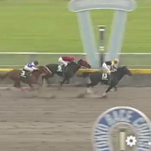 重賞6勝の追い込み馬ブロードアピール死す。