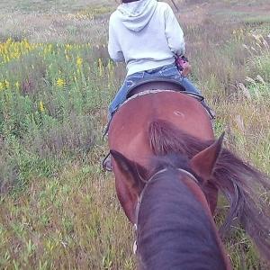 阿蘇山の牧場を馬に乗って散歩した 九州ツーリング2019_10/20(2)