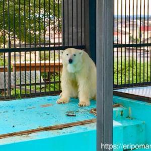 おびひろ動物園の授乳室は2か所!園内ベビーカーOKで赤ちゃん連れでも安心