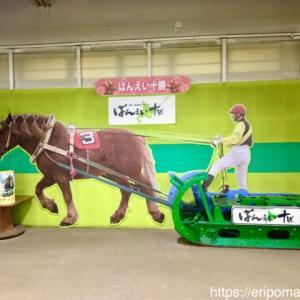 【ばんえい競馬】帯広競馬場の授乳室!キッズスペース付きのファミリールームがあるよ