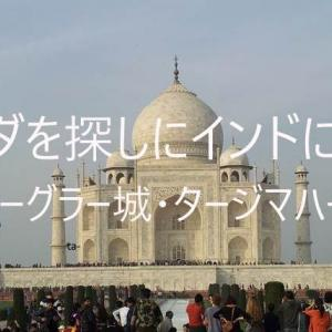 第2回 ブッダを探しにインドに行った② アーグラー編 タージ・マハール アーグラー城塞 現地バスツアー