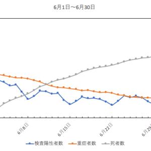 6月のグラフ(新型コロナ)