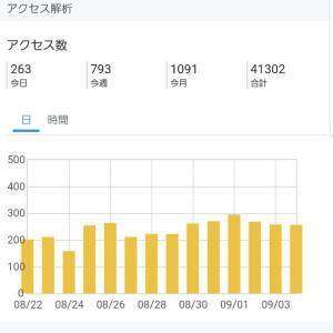 【雑記ブログ】ブログ開始から10か月目のアクセスとアドセンスの記録